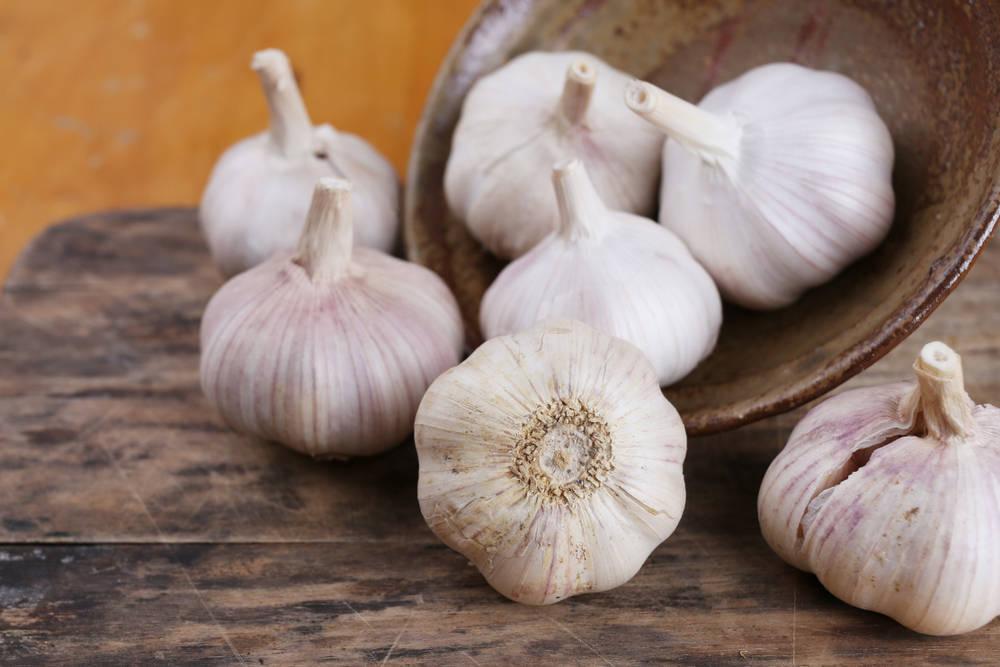 Imperio Garlic, ajo y de calidad español